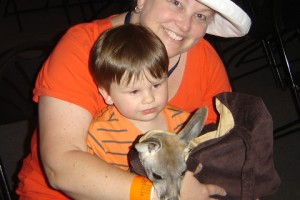 Baby Kangaroo Equals Cuteness Overload – Mommy and Me Monday