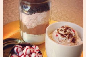 Homemade Peppermint Mocha Mix #SundaySupper #HolidayGift