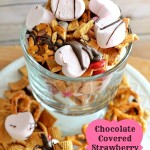 Chocolate Covered Strawberry S'Mores Snack Mix