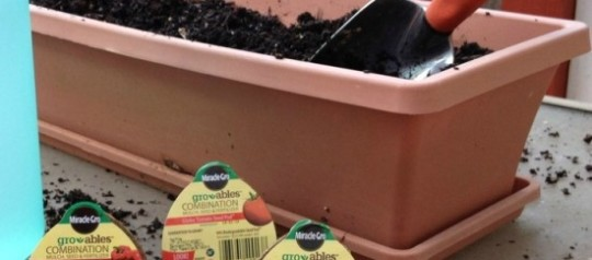 Garden Spring Planting is a Snap with @MiracleGro Gro-ables