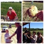 Vidalia Onion Festival and Farm Tour Adventure #VisforVidalia