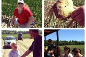 Vidalia Onion Festival and Farm Tour Adventure #VisforVidalia