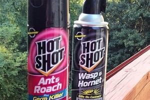 Hot Shot® Insecticides Help Keep a Home Bug Free #HotShot #AD @hotshot