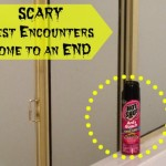 Keep Your Favorite Hiding Spots Pest free with @HotShot Insecticides #HotShot