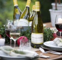 Wine Pairing Tips with Sonoma-Cutrer #WinePairing www.InTheKitchenWithKP #Wine