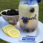Sparkling Fresh Lemonade with Blackberries to Celebrate National Lemonade Day