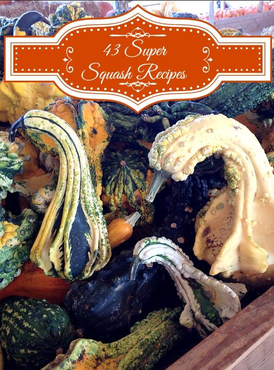 43 Super Squash Recipes www.InTheKitchenWithKP #SundaySupper