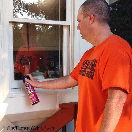 Hot Shot® Insecticides Help Keep a Home Bug Free www.InTheKitchenWithKP 3